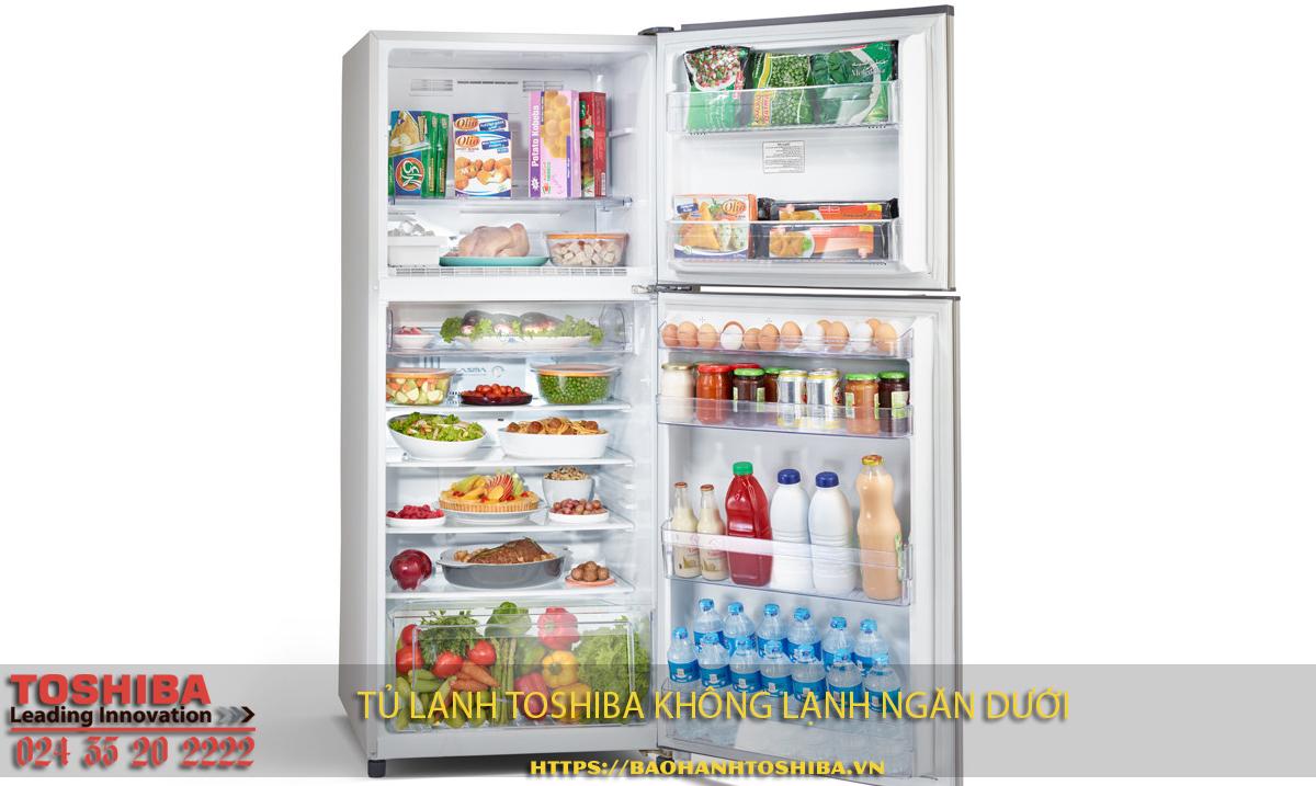 Cách sửa tủ lạnh Toshiba không lạnh ngăn dưới
